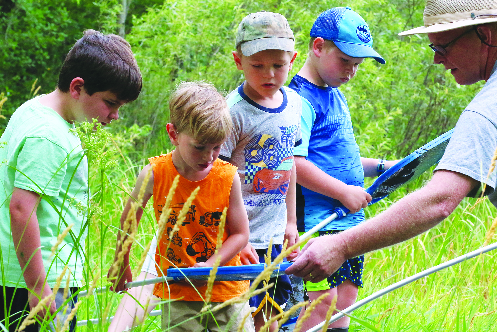Matthew Briggs, left, August Yogow, Evan Rankin and Jeremiah Hodges survey the bugs, tadpoles and other pond life in a net shared by Navarino Nature Center naturalist Tim Ewing.Carol Ryczek | NEW Media