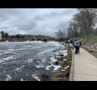 Families from Wisconsin witness the April 9 sturgeon migration at Sturgeon Park in Shawano