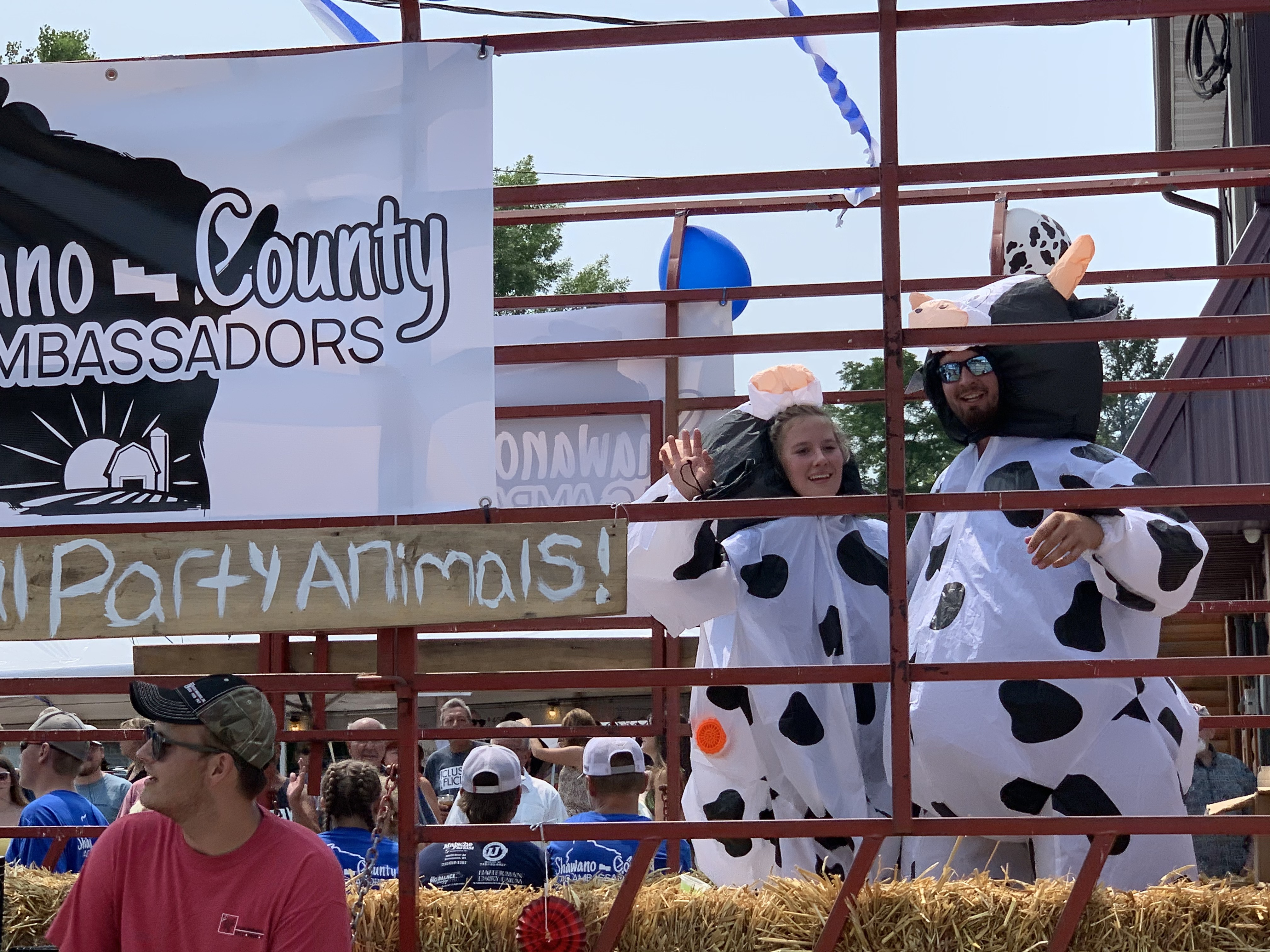 Two People dressed as cows dance to polka music as the parade goes down Pulaski Street on July 18. Luke Reimer   NEW Media