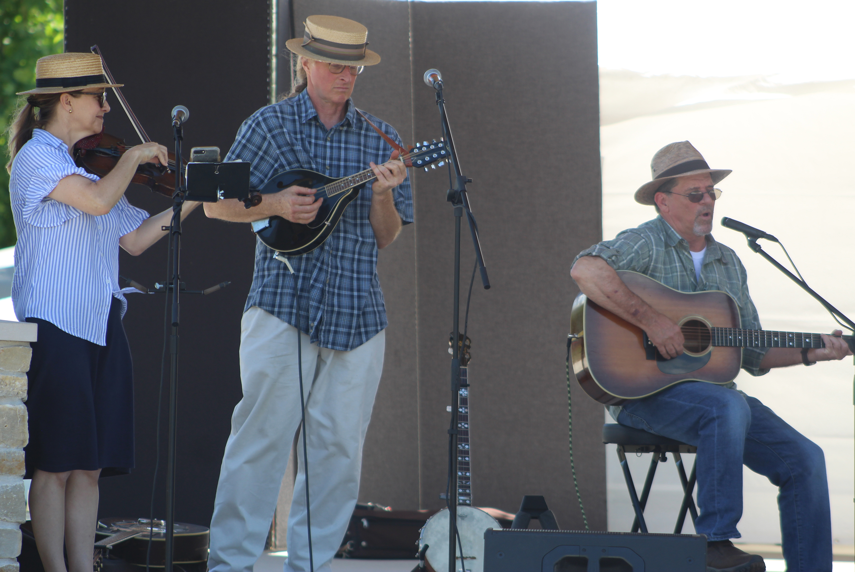 Musician Pat Wiley, right, of Clintonville, is joined by Frogwater, a duo from Milwaukee by the names of Susan and John Nicholson, during the folk music portion of Arts in the Park held June 12 at Franklin Park.(Lee Pulaski | NEW Media)