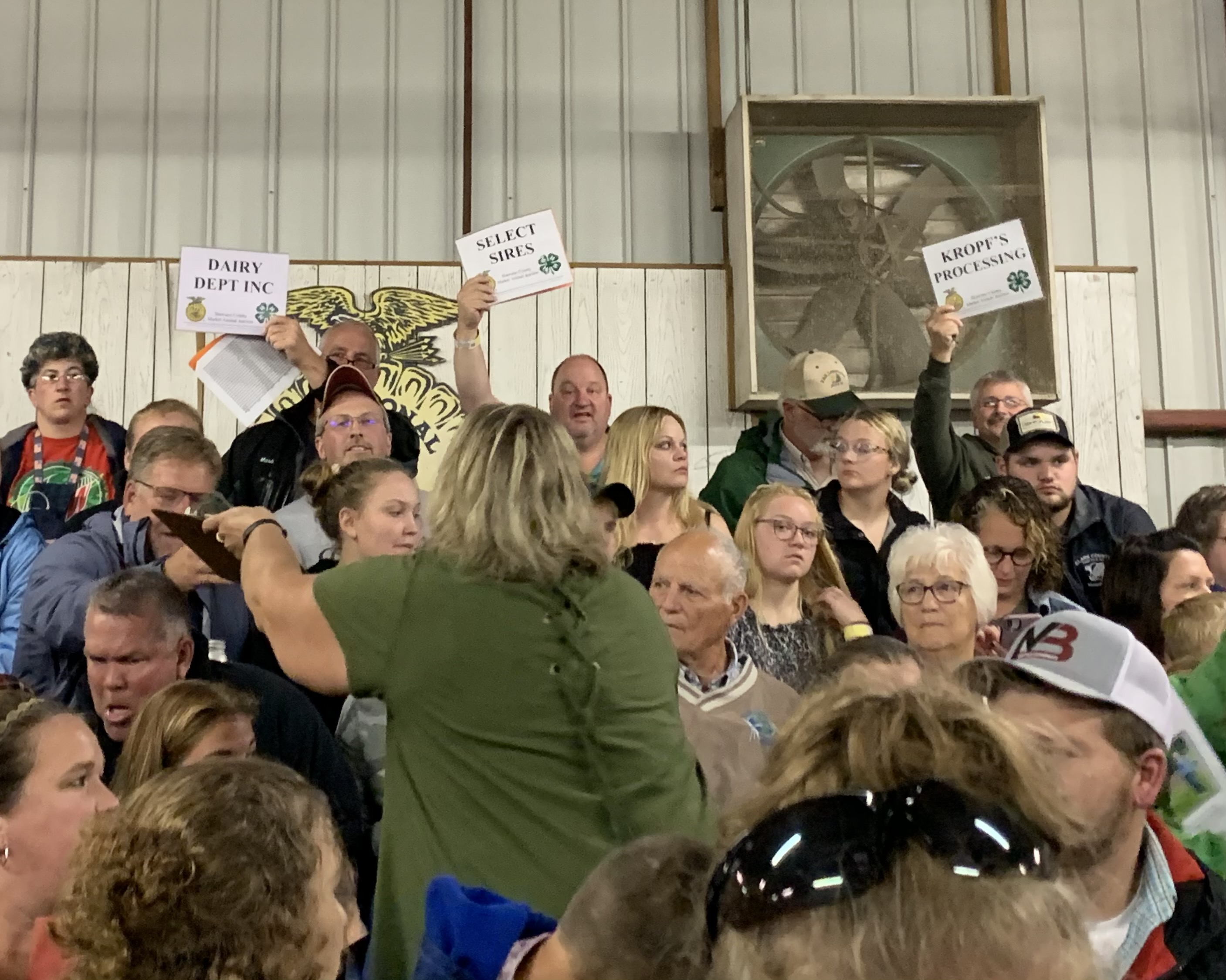 Bids arise from Dairy Department Inc., Select Sires and Kropf's Processing as representatives hope to get the winning bid for the livestock at the Shawano County Fair on Sept. 3.<br />(Luke Reimer   NEW Media)